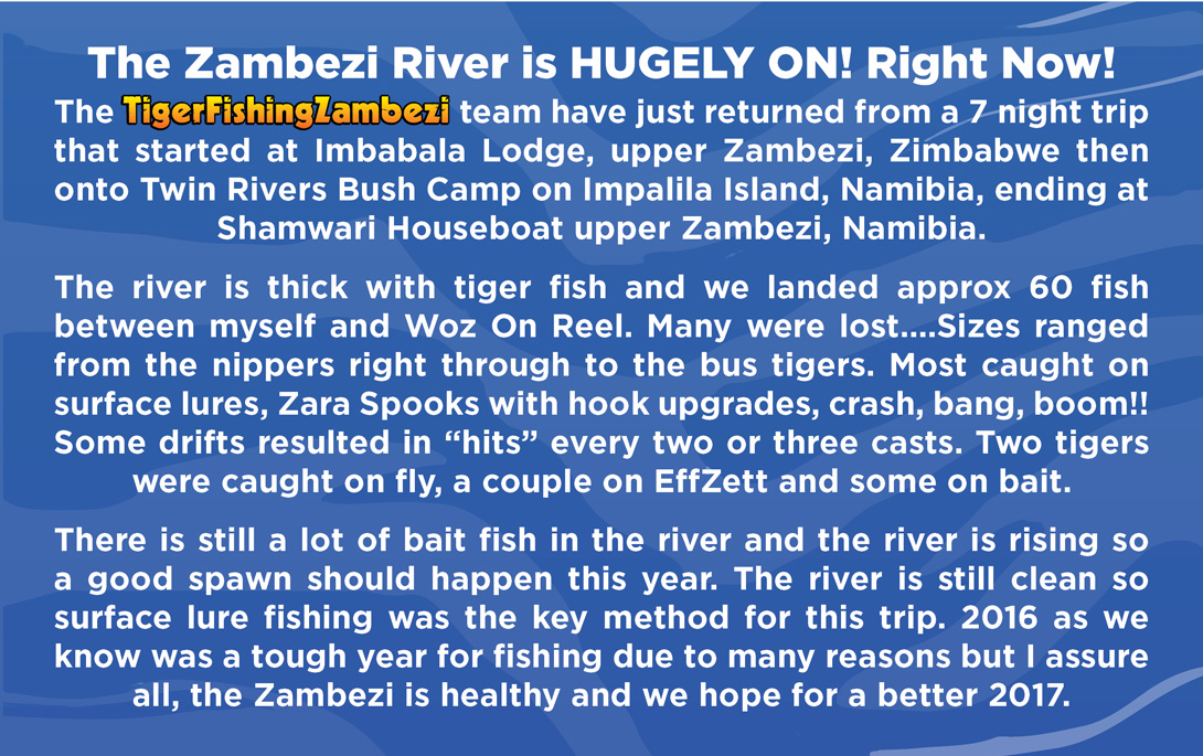 Seven_Nights_on_the_Zambezi_4.jpg (384 KB)