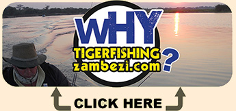 Why-Tigerfishingzambezi-2.jpg (34 KB)