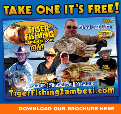 Download our tiger fishing zambezi brochure