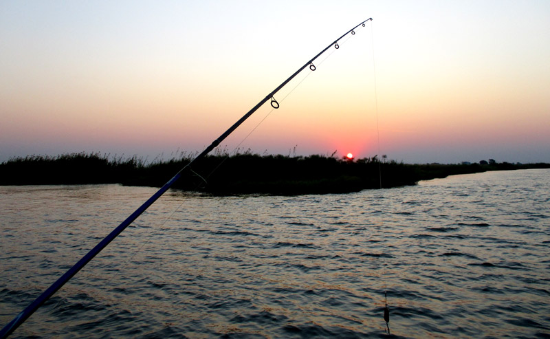 Suset fishing on the Zambezi